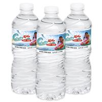 Picture of 16.9 oz. Twist Cap Bottled Water