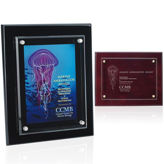 """Picture of Floating Glass Plaque - 8"""" x 10"""""""